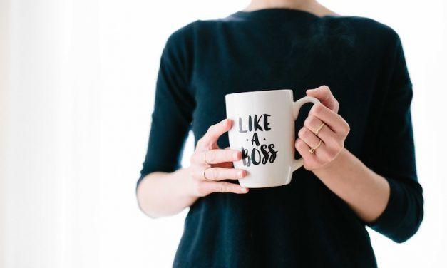 Kadın Girişimciler İçin İş Fikirleri